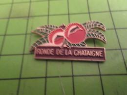 718b Pins Pin's / Rare & Belle Qualité THEME ALIMENTATION / RONDE DE LA CHATAIGNE ET DU MARRON Manif Gilets Jaunes ? - Food