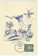 Carte Maximum MOUSTIQUE  Aedes .Culens & Tipula (2 CARTES .) - Cartoline Maximum
