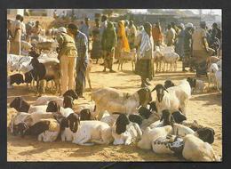 SOMALIA SUUQA XOOLAHA LIVESTOCK MARKET UNUSED - Somalie