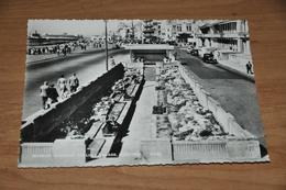 7069-   SUNKEN GARDENS, CARLISLE PARADE, HASTINGS - Hastings