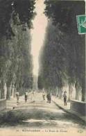 91 - Montgeron - La Route De Crosne - Animé - Voir Scans Recto-Verso - Montgeron