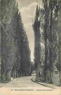 91 - Montgeron - Avenue Des Peupliers - Voir Scans Recto-Verso - Montgeron