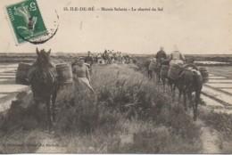 17 ILE De RE  Marais Salants - Le Charroi Du Sel - Ile De Ré