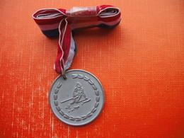 Skiing Medal.PRVENSTVO GTS SL CICIBANKE.Kobla - Sports D'hiver