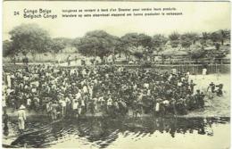 Congo Belge. Indigènes Se Rendant à Bord D'un Steamer Pour Vendre Leurs Produits. - Congo - Brazzaville