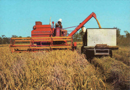Australia > Rice Harvesting, Harvester, Moissonneur, Mähdrescher, Unused, Mint - Tracteurs