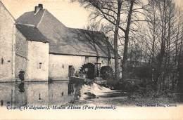 Namur Couvin  Villégiature    Moulin D'Iénau  Parc Promenade  Watermolen Molen     I 5157 - Couvin