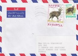 LETTRE. COVER. ETHIOPIA. 2002. ADDIS ABEBA TO FRANCE.  ANTILOPE. TRAGELAPHUS  SCRIPTUS MENELIK/ GUIB HARNACHE DE MENE  2 - Ohne Zuordnung