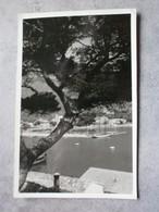 Mallorca. Soller. El Puerto (1957) - Mallorca