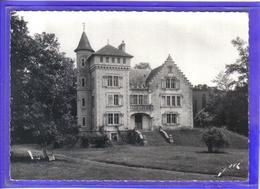 Carte Postale 64. Feas  Le Chateau  Très Beau Plan - Autres Communes