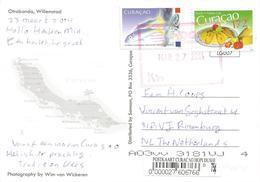 Netherlands Antilles 2014 Curacao Yellow Goatfish Mulloidichthys Martinicus Maiye Cake Viewcard - Curaçao, Nederlandse Antillen, Aruba