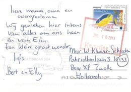 Netherlands Antilles 2013 Curacao Cocoa Damselfish Stegastes Variabilis 285c Viewcard - Curaçao, Nederlandse Antillen, Aruba