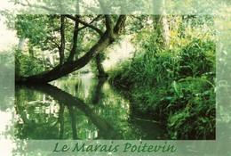 CP - LE MARAIS POITEVIN - Deux-Sèvres 79 - Non Circulé - France