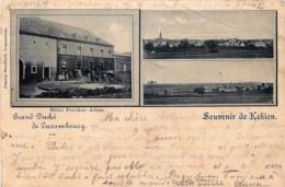 Luxembourg - Capellen - Souvenir De Kehlen - Hôtel Poeckes-Adam - Edit. Ch. Bernhoeft - Cartes Postales