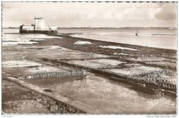 17  Le Fort Du  Chapus  -  En  Premier  Plan  Quelques   Claires - Autres Communes
