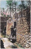 Pf. SCENES ET TYPES. Type De Jeunes Musulmans à Laghouat. 176 - Algérie