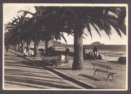 ALASSIO, Passeggiata E Isola Gallinara - Viaggiata - Altre Città