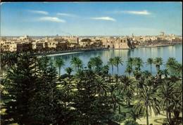 Postcard, Libya, Tripoli, Sea Front Garden And View, Written, Not Circulated - Libia