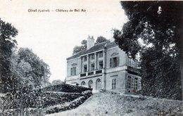 OLIVET  Château De Bel Air - Frankreich