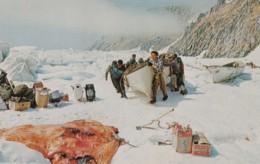Ukivok Alaska, Natives Hunt Walrus And Seal, King Island Bering Sea, C1960s Vintage Postcard - Andere