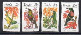 VENDA - 1981 - BIRDS - OISEAUX - - Venda