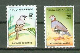Maroc 1987,2V In Set ,birds,vogels,vögel,oiseaux,pajaros,uccelli,aves,MNH/Postfris(A3629) - Oiseaux