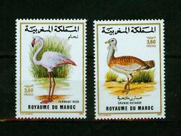 Maroc 1988,2V In Set ,birds,vogels,vögel,oiseaux,pajaros,uccelli,aves,MNH/Postfris(A3630) - Oiseaux
