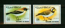 Maroc 1989,2V In Set ,birds,vogels,vögel,oiseaux,pajaros,uccelli,aves,MNH/Postfris(A3631) - Oiseaux