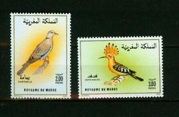 Maroc 1990,2V In Set ,birds,vogels,vögel,oiseaux,pajaros,uccelli,aves,MNH/Postfris(A3632) - Oiseaux