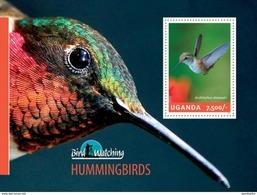UGANDA 2014 SHEET BIRDS OISEAUX AVES PASSAROS HUMMINGBIRDS COLIBRIS KOLIBRIS COLIBRIES Ugn14307b - Uganda (1962-...)