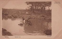 CENTRAL JAVA, INDONESIA. BUFFALOS. ARW KIEKJES VAN JAVA'S LAND EN VOLK. CIRCA 1920s NON CIRCULEE - BLEUP - Indonesië
