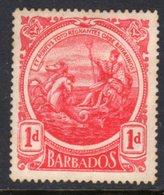 BARBADOS - 1917 COLONY BADGE ONE PENNY BRIGHT CARMINE-RED STAMP UNUSED NO GUM SG 183a - Barbados (...-1966)