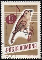 ROMANIA - Scott #1839 Acrocephalus Arundinaceus (*) / Used Stamp - 1948-.... Republics