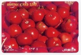 Pomme Apple  Fruit  Carte Card Karte R388 - Alimentation
