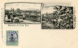 COSTA RICA(GRUSS) CAFE - Costa Rica