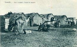SOMALIE(BENADIR) - Somalia