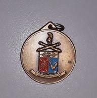 Medaglia Ricordo Smaltata Scuola Tecnici Elettronici Artiglieria - Esercito Italiano - Usata 1992 - Italia