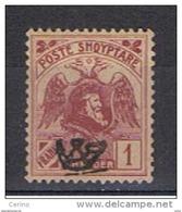 ALBANIA:  1920  SOPRASTAMPATO  -  1 F. VINACEO  L. -  YV/TELL. 111 - Albania