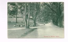 Entrance To Badulla,Ceylon. - Sri Lanka (Ceylon)