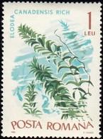 ROMANIA - Scott #1870 Marine Flora; Elodea Canadensis / Mint NH Stamp - 1948-.... Republics