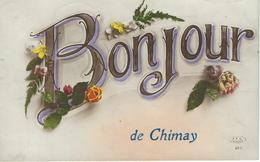 Bonjour De CHIMAY - Cachet De La Poste 1924 - Chimay