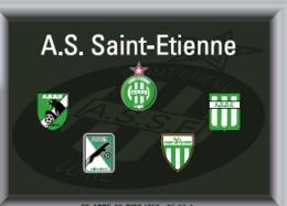 Héraldisme Sportif- Collection De Pins - ASSE - Soccer