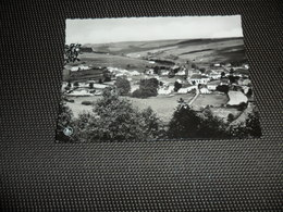 Radelange ( Martelange )  Panorama - Martelange