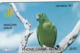 Jamaica - Amazona Agilis - 8JAMA - Jamaica