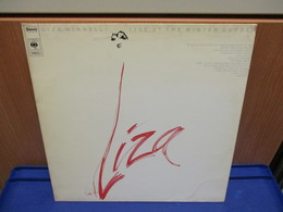 LP326- LIZA MINNELLI LIVE AT THE WINTER GARDEN - Hit-Compilations