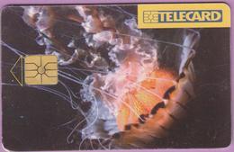 Télécarte Tchéquie °° Reklamu -gem- 50j-100Kc - 1996.12. - Tchéquie