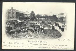 +++ CPA - MELSELE - Pensionnat - Carte Animée - Cachet Relais 1900  // - Beveren-Waas