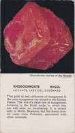 POSTCARD - MINERAL  - THE GEOLOGICAL SOCIETY OF AMERICA -  RHODOCHROSITE - Minéraux & Fossiles