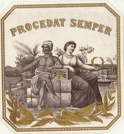 1893-1894 étiquette Pour Boite à Cigare Havane PROCEDAT SEMPER - Etiquettes