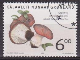 Champignons, Mushroom - GROENLAND - Russule - N° 411 - 2005 - Groenland